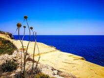 Gozo Dry Summer. Island Gozo Summertime mediterranea Sea stock images