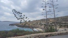 Gozo fester Royaltyfri Fotografi