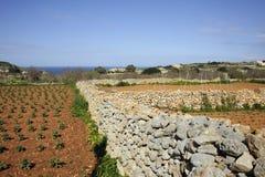 Gozo spring Stock Image
