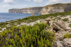 Gozo Xlendi Bay. Cliffs near Xlendi bay at Gozo island Royalty Free Stock Photography