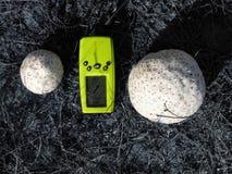 GPS between wolf farts. Amazing handheld GPS among wolf farts Stock Photo