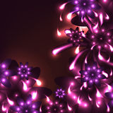 Gráfico brillante del rosa del alcohol de la flor Fotos de archivo