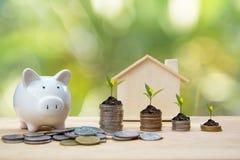 Gráfico cada vez mayor de la pila de la moneda del dinero para el negocio de Real Estate imagenes de archivo