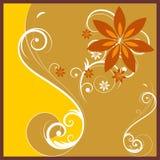 Gráfico Curly de Brown Foto de Stock Royalty Free