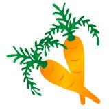 Gráfico da cenoura Imagens de Stock