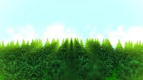 Gráfico da paisagem da floresta, fundo abstrato da natureza, animação do laço, filme