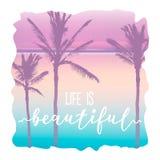 Gráfico de la camiseta del Palm Beach y letras hermosas Fotos de archivo libres de regalías