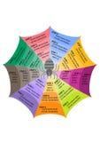 Gráfico de la información de la araña Imagen de archivo libre de regalías