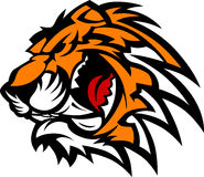Gráfico de la mascota del tigre Imagenes de archivo