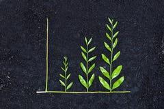 Gráfico de negocio verde foto de archivo