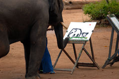 Gráfico del elefante. Fotos de archivo libres de regalías