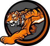 Gráfico do corpo da mascote do tigre Fotografia de Stock