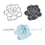 Gráfico fijado con los succulents en el fondo blanco Mano stock de ilustración