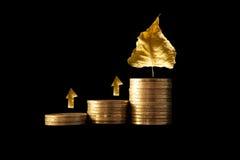 Gráfico financiero. Imagen de archivo