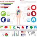 Gráfico médico del Info Imágenes de archivo libres de regalías