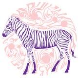 Gráficos da zebra com listra roxa ilustração royalty free