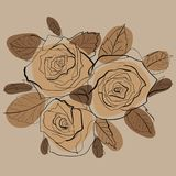 Gráficos de vetor do desenho com teste padrão floral para o projeto Projeto natural da flor floral Gráfico, desenho de esboço Fotografia de Stock