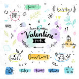 Gráficos de vetor florais do dia de Valentim dos elementos do desenho Fotografia de Stock