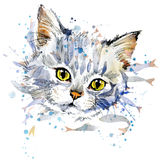 Gráficos divertidos de la camiseta del gatito y de los pescados Foto de archivo