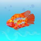 Gráficos do polígono: peixes de mar Imagem de Stock
