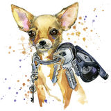 Gráficos do t-shirt do cão do terrier de brinquedo a ilustração do cão do terrier de brinquedo com aquarela do respingo textured  ilustração do vetor
