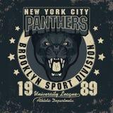 Gráficos do t-shirt do esporte de Panter Fotografia de Stock