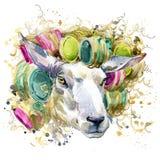 Gráficos do t-shirt dos carneiros ilustração dos carneiros com fundo textured aquarela do respingo carneiros incomuns da aquarela ilustração royalty free