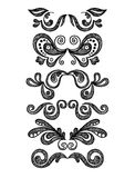 Gráficos florais de um vintage ajustados Imagem de Stock Royalty Free