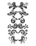 Gráficos florais do vintage ajustados Imagem de Stock Royalty Free