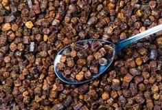 Gránulos del propóleos con la cuchara, producto de la abeja Fotografía de archivo libre de regalías