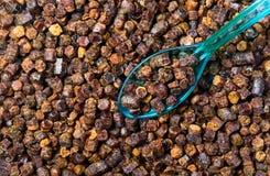 Gránulos del propóleos con la cuchara, producto de la abeja Foto de archivo