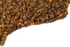 Gránulos del propóleos, producto de la abeja, composición del marco Foto de archivo libre de regalías