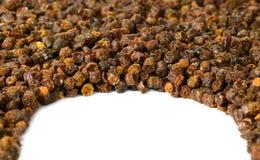 Gránulos del propóleos, producto de la abeja, composición del marco Imagenes de archivo