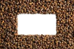 Gránulos textura, producto del propóleos de la abeja Fotografía de archivo