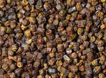 Gránulos textura, producto del propóleos de la abeja Imagen de archivo libre de regalías