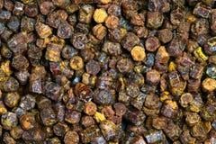 Gránulos textura, producto del propóleos de la abeja Foto de archivo