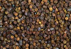 Gránulos textura, producto del propóleos de la abeja Fotos de archivo libres de regalías