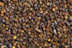 Gránulos textura, producto del propóleos de la abeja Fotos de archivo
