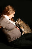 Grávido com o gato Fotos de Stock