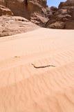 Grânulos beduínos na sobremesa amarela da duna de areia Fotografia de Stock Royalty Free