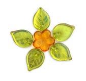 Grânulos da flor Foto de Stock Royalty Free