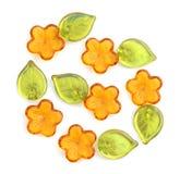 Grânulos da flor Fotografia de Stock Royalty Free