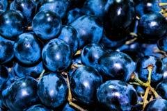 Grânulos de uvas pretas Fotografia de Stock Royalty Free