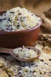 Grão convencional e arroz selvagem imagens de stock royalty free
