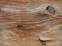 A grão corroeu o fundo de madeira, textura de madeira áspera, pa da madeira lançada à costa Fotografia de Stock