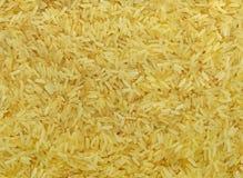 Grão cozinhada do arroz Foto de Stock