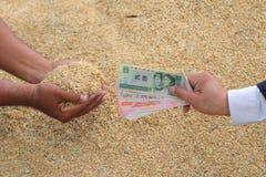Grão de compra do arroz do homem de negócios fotos de stock royalty free