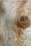 Grão de madeira áspera Imagem de Stock Royalty Free
