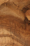 Grão de madeira Imagem de Stock Royalty Free