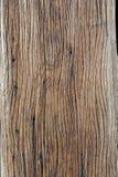 Grão de madeira Fotos de Stock
